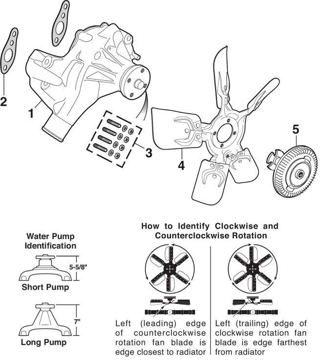Water Pumps and Fan Clutch