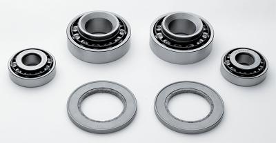 Roller Bearing Conversion Kit