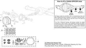 Rear Differential Components - DANA 44 and DANA 60