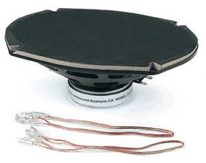 Dual Voice Coil Speaker