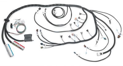 Stand-Alone LS / Vortec Swap Engine Harnesses