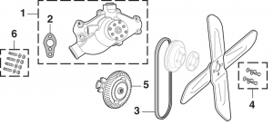 Water Pump and Components