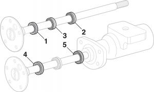 Rear Wheel Bearings