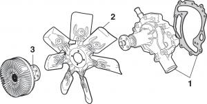 Water Pump, Fan Clutch and Fan